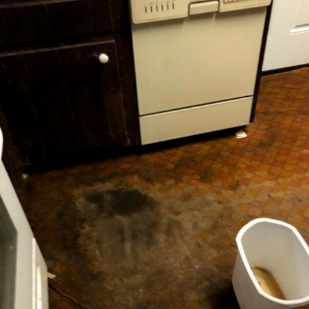Water Damage Removal Brooklyn Image 2